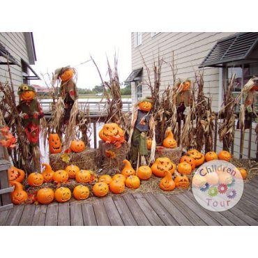 Mai multe despre Excursie de Halloween la Doftana, cu activitati incluse