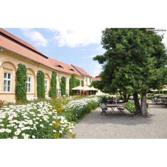 Excursie 2 zile la Castelul de Lut din Valea Zanelor-Avrig