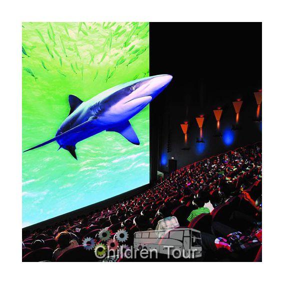 Vizionare film 3D + vizita in Sala de proiectie
